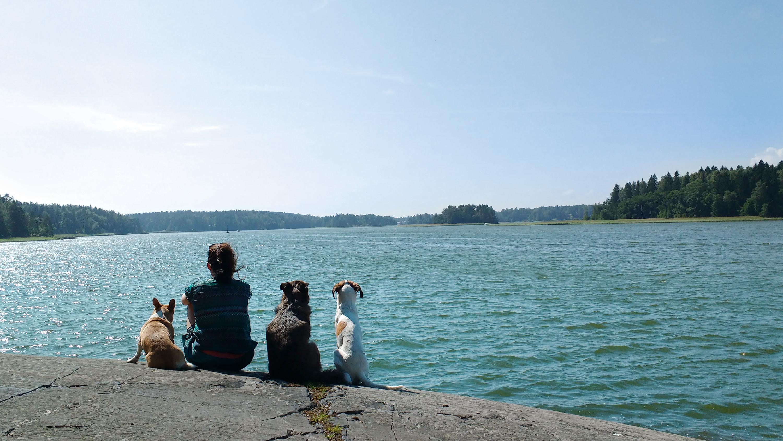 Hundsgemeiner Urlaub von 01.10.-03.11.